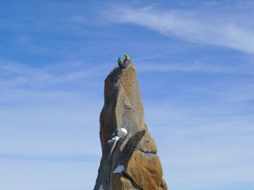 Aiguille du Midi South pillar with Tatu Autio. Photo: Glen Plake